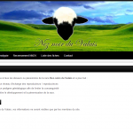 site neznoirduvalais.fr